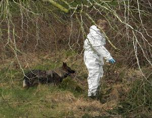 Gardai with a sniffer dog at the scene. Photo: PA