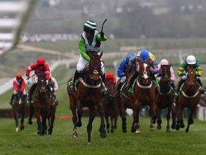 Hurricane Fly could only finish third