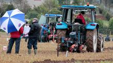 The Ploughing Championships got under way today.