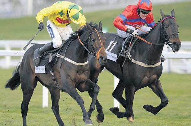 Sprinter Sacre (Barry Geraghty, right) edges out King Of The Night (Ruby Walsh) at Ascot