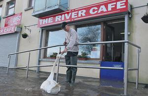 A hungry swan heads for the River Cafe for a bite to eat during the flood in Arklow