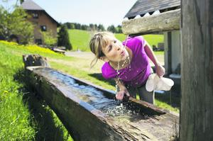 Testing the water at a natural pumphouse in Baden-Baden