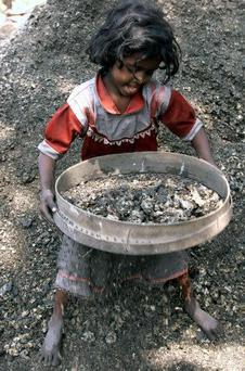 CHILD LABOUR: Above, Six-year-old Tanjila sifts pieces of coal in Calcutta, India. Right, a child carries unbaked bricks to a kiln at a brick factory just outside Calcutta