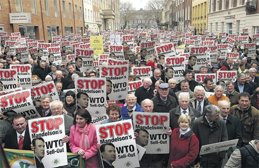 Some of the 10,000 farmers protesting outside the Dail over worries that EU proposals will destroy the beef and dairy industry