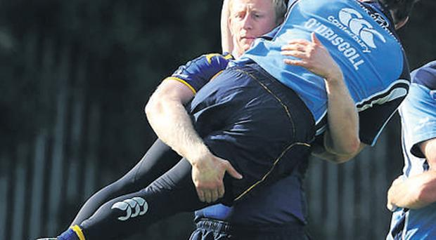 Leo Cullen lifts team-mate Brian O'Driscoll during Leinster rugby squad training yesterday