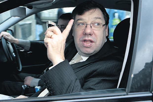 Taoiseach Brian Cowen's Government is struggling to get on top of the crisis
