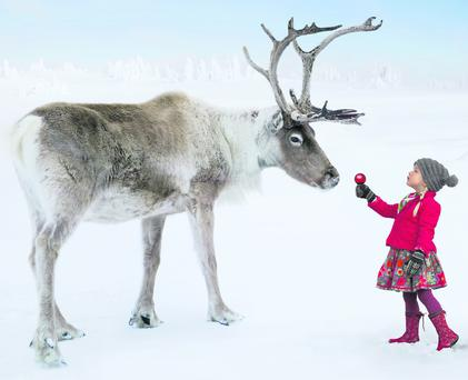 GIRL AND REINDEER IN WINTER FOREST