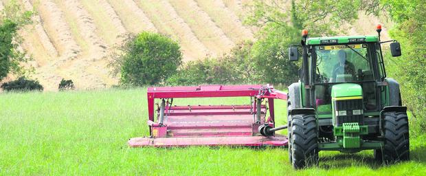 The recovery in farmer incomes this year has been a factor in the overall lift in land prices. Photo Clive Wasson