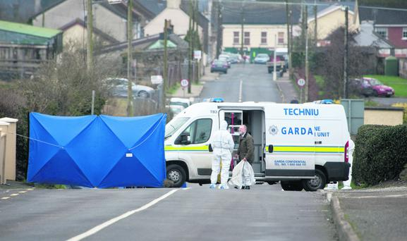 Members of the Garda Technical Bureau examining the scene of the shooting in Newport, Co Tipperary