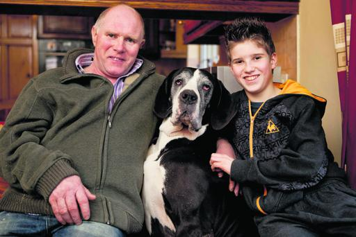 David and Ryan Moloney ,Lecarrow,Tulla, Co Clare with their Great Dane whose pet name is