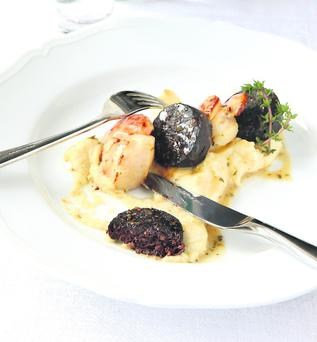 Grilled scallops, rosscarbery black pudding, lemon and thyme dressing