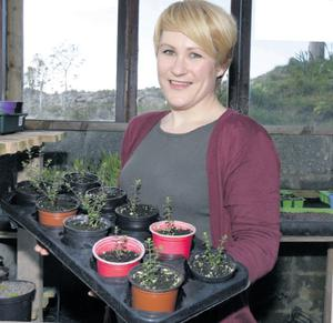 Green fingers: Joanne Butler in her greenhouse at her home in Gortahork, Co Donegal. Photo by Declan Doherty