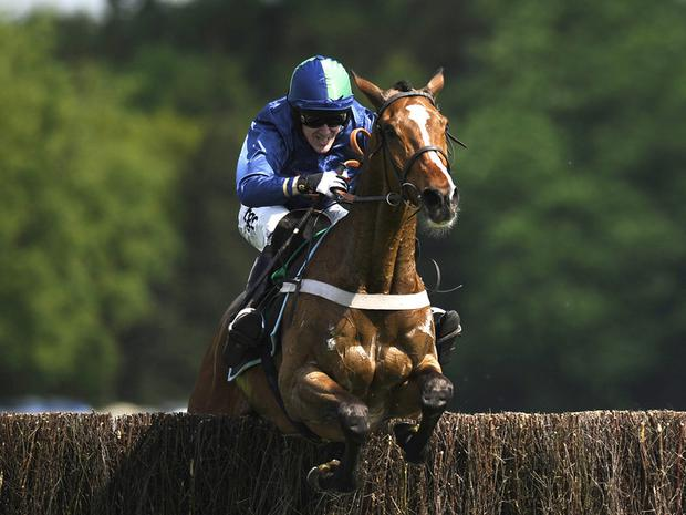 French Opera: Top weight for Nicky Henderson