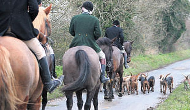 Foxhunting has come under increasing scrutiny in recent years