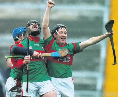 Birr captain Brian Whelahan, right, celebrates at the final whistle with team-mates Paul Casey and Michael Dwane after their Leinster club hurling final victory in 2007