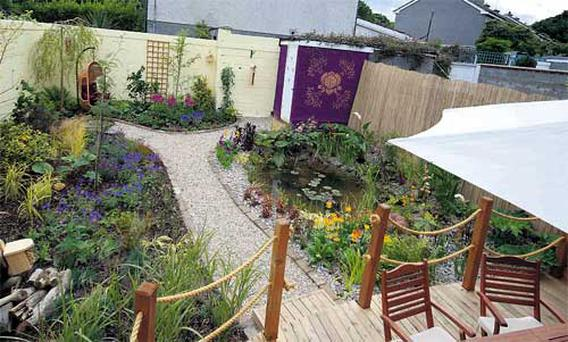 For his entry into Super Garden, Sean was given a typical suburban garden in Shankill.