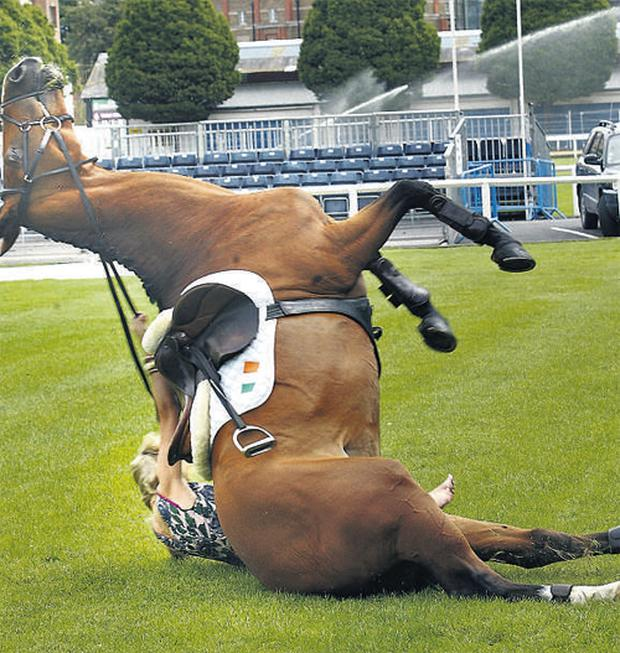 Top model Pippa O'Connor had a dramatic escape yesterday when she was thrown off a horse which then fell on top of her