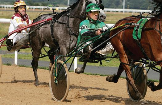 Strap Yourself In For A Harness Racing Revival