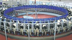 SMARTER FARMING: A Swiftflo Revolver rotary milking parlour in action