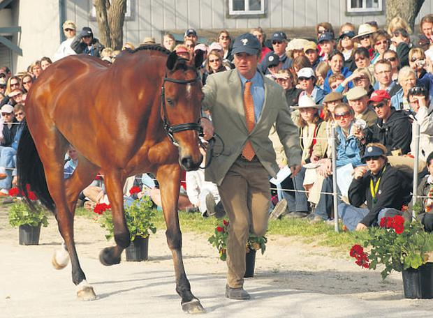 First: Connaught, bred in Co Clare, took first place at the Rolex three-day event in Lexington, Kentucky, under rider Philip Dutton