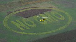 An ultralight helicopter hovers above a field with giant buckwheat letters saying: 'NO GMO' (Genetically Modified Organism) on October 9, 2008 in Breitenfurt, some 60 Kilometers south east from Vienna, during a protest by Greenpeace and Austria's biggest Organic Farmers Alliance 'BIO AUSTRIA.' Photo: Dieter Nagl/AFP/Getty Images
