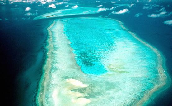 The Great Barrier Reef, Australia. Photo: Getty Images