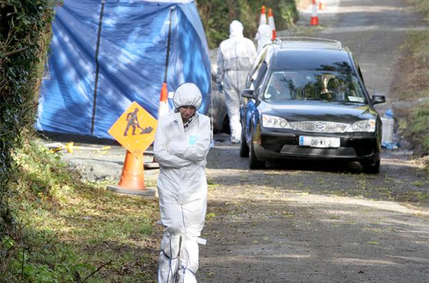 GRIM: State pathologist Prof Marie Cassidy walks away after examining the body in the boot