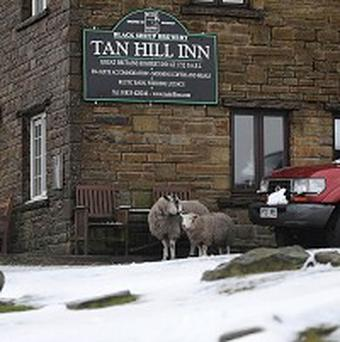 Tan Hill Inn, the highest pub in Great Britain