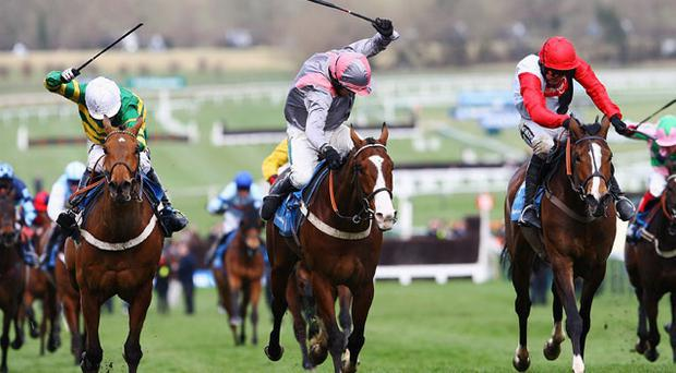 Punjabi, winner of last year's Champion Hurdle under Barry Geraghty, will make his seasonal comeback on Saturday if Ffos Las beats the weather. Photo: Getty Images