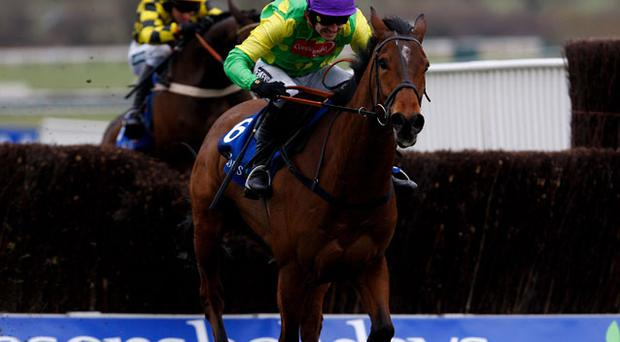 Ruby Walsh will be hoping to score again at Cheltenham with Master Minded Photo: Getty Images