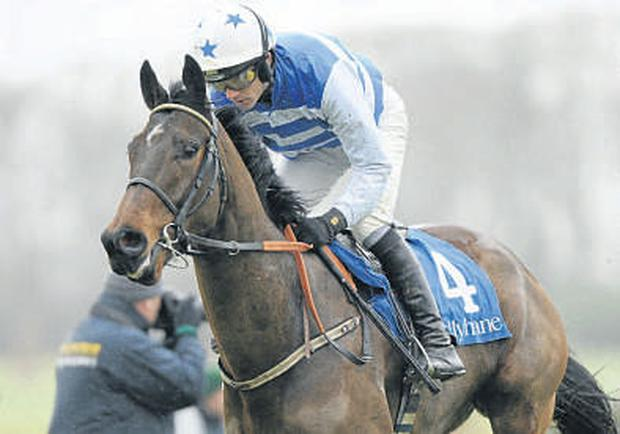 Secant Star, with Ruby Walsh up, on the way to winning the The Ballyhane Stud Maiden Hurdle at Gowran Park yesterday