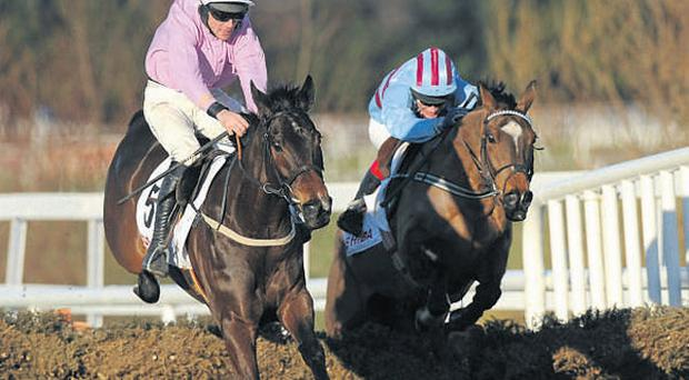 Solwhit, with Davy Russell up (left), leads eventual third Sublimity (Philip Carberry) over the last on the way to winning the Toshiba Irish Champion Hurdle at Leopardstown