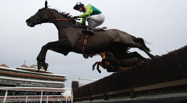 Denman, here winning Newbury's Hennessy Gold Cup under Ruby Walsh, is to miss Leopardstown next month in favour of a return trip to Newbury