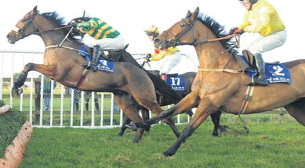 Captain Cee Bee, under Tony McCoy, winning at Naas in December from Zaarito (No 17) and An Cathaoir Mor in what was one of the best novice chases of the season