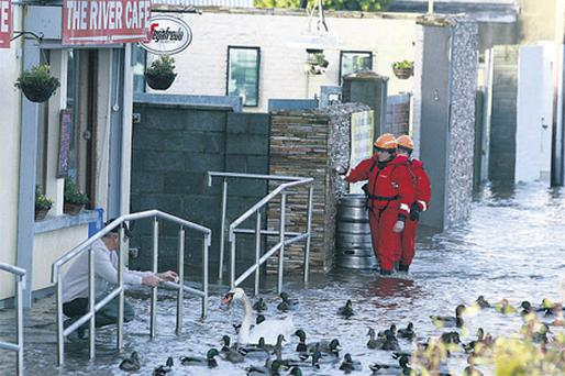 Christopher O'Connell feeds the ducks outside his cafe in Arklow as the civil defence assess the situation following the widespread flooding in January.