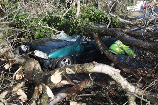 The scene of the accident at Glenealy , Co Wicklow, in which a driver was seriously injured after a falling tree crushed his car