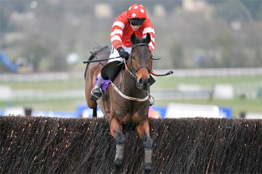 The Cooldine camp are hoping the horse can return to the form he showed in winning last year's RSA at Cheltenham