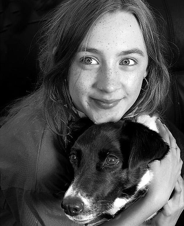 Actress Saoirse Ronan with her 13-year-old border collie Sassy. Photo: Brendan Burke