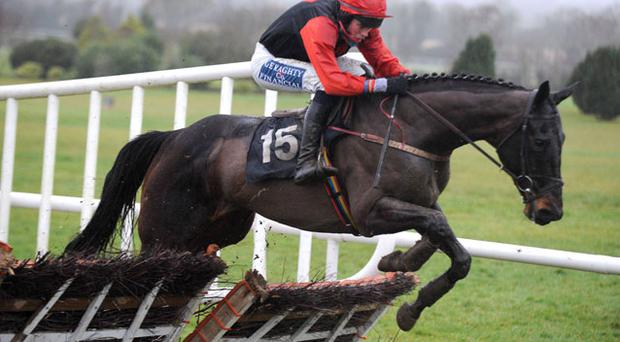 Colm Murphy's Kimberlite King can break his duck over fences at Fairyhouse