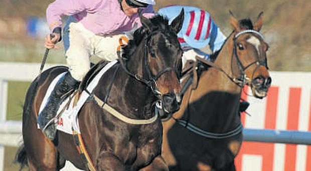 Solwhit and Davy Russell will aim to follow up their Irish Champion Hurdle win