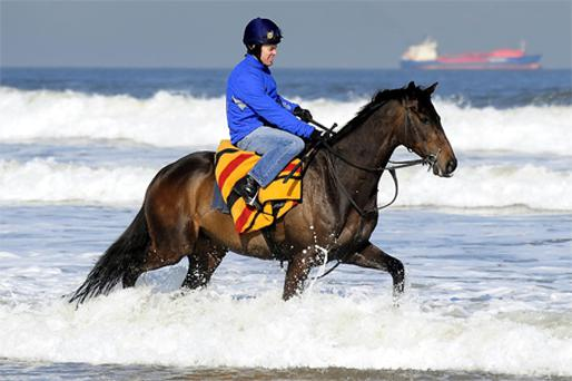 Jockey Graham Lee puts Kalahari King through its paces on Redcar Beach yesterday in preparation for Cheltenham