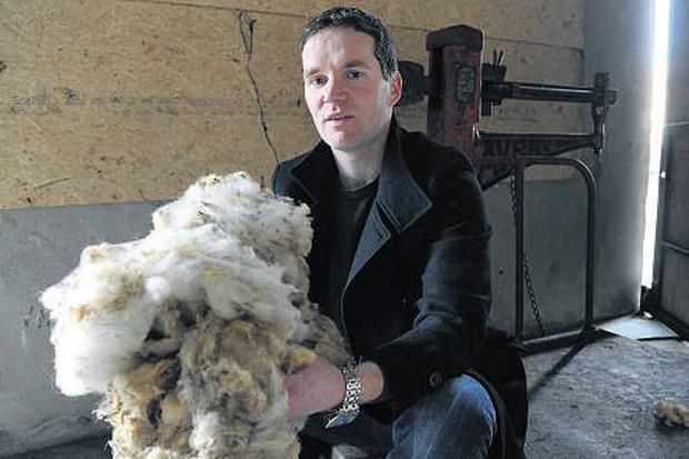 RESTRICTED: Wool buyer David Glynn, Dunmore, Co Galway, sits in his store as fears grow that EU proposals to introduce a raft of new wool storage rules may impact hard on the sector RAY RYAN