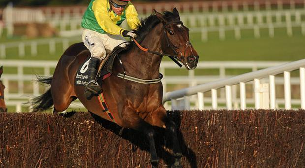 Sizing Europe clears the last on the way to winning at Leopardstown in December. Trainer Henry de Bromhead is hoping for similar success at Cheltenham