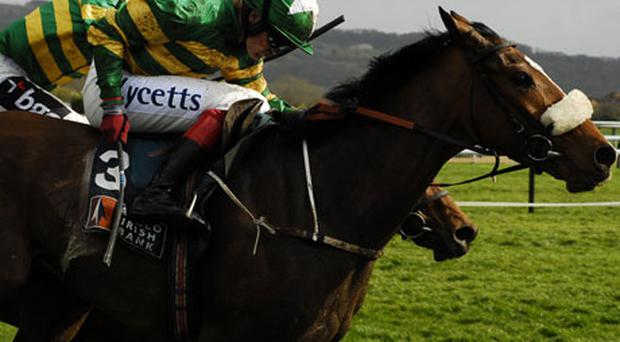 Captain Cee Bee is a contender in next Wednesday's Irish Independent Arkle Trophy. All Photo's Getty Images