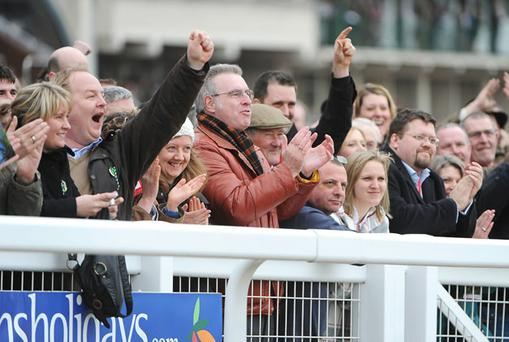Punters celebrate after the Willie Mullins-trained Mikael d'Haguenet, with Ruby Walsh up, wins at Cheltenham last year. Many will again be following Walsh with their money this time around