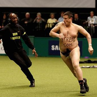 A streaker livened up the proceedings at the last night of Crufts