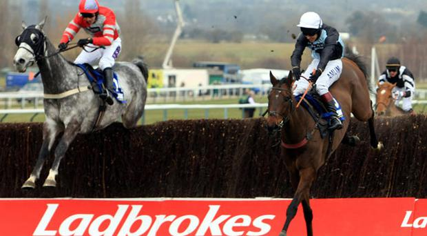 Copper Bleu (right) winner of the Jewson Novices' Handicap Chase Photo: PA