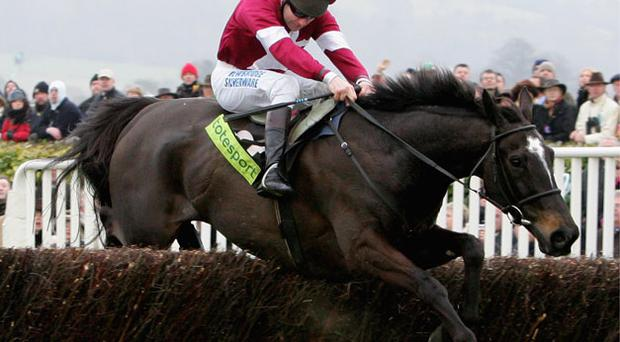 War of Attrition will run his final race at Punchestown. Photo: Getty Images