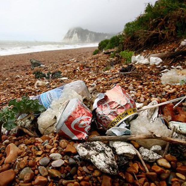 Piles of plastic rubbish have been collected in the latest annual survey of beach litter