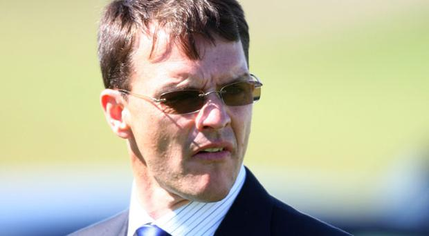 Aidan O'Brien has blamed the testing conditions. Photo: Getty Images